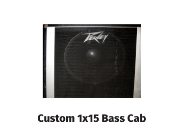 custom 1x15 bass cab